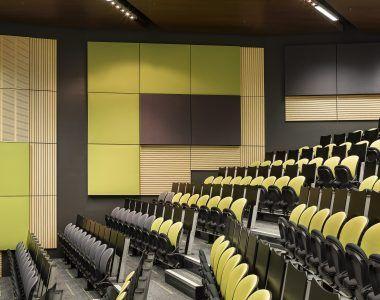 Deakin University - Building HC Lecture Theatre - Au.diSlot, Au.diSlat, Au.diTouch_Au.diImage Rock Maple (6)