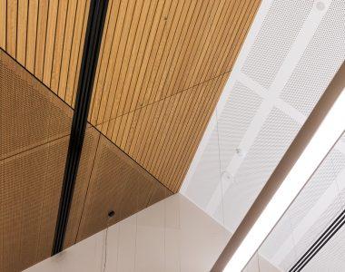 Au.diBoard-Au.diPanel.-Au.diSlat-Broadmeadows-Childrens-Court-Lyons-Architects-22