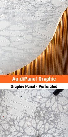 Au.diPanel Graphic