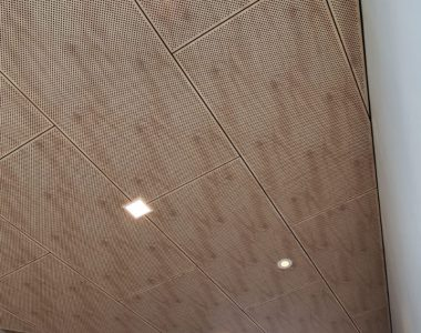 Comely Banks Reserve Sports Pavilion Au.diPanel AP250D100 Inluxe Image Hoop Pine (1)